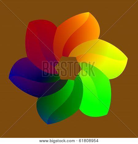 Raninbowy Flower