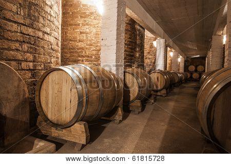 Wine Barrels In Cellar Of Malbec, Mendoza Province, Argentina
