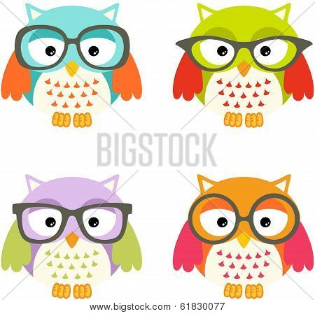 Lovely Owls With Glasses