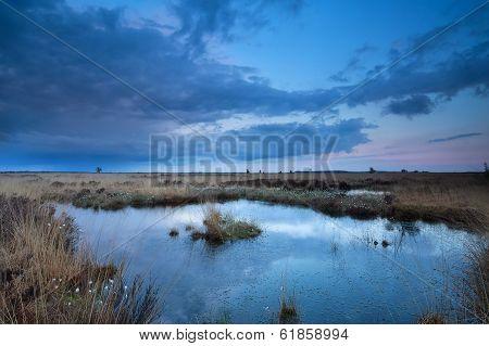 Sunset Sky Over Swamp In Summer