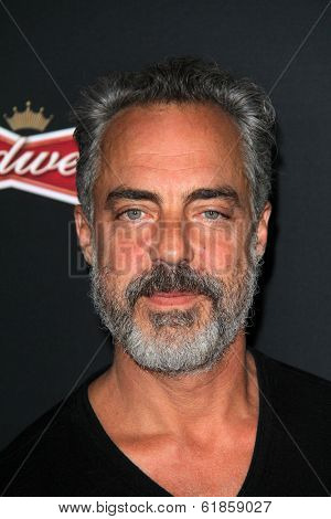 LOS ANGELES - MAR 19:  Titus Welliver at the PaleyFEST 2014 Sleepy Hollow at Regal 14 Theaters on March 19, 2014 in Los Angeles, CA