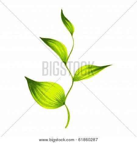 Decorative Ornament  Branch With Green Leaves Tea