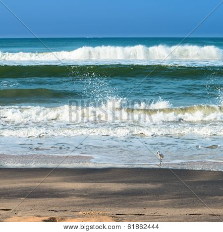 Beautiful Seascape With Foamy Waves, White Bird On The Beach And Fishing Boats On The Horizon. Varka