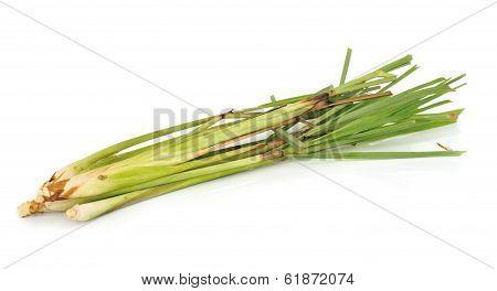 Fresh Lemon Grass On White Background