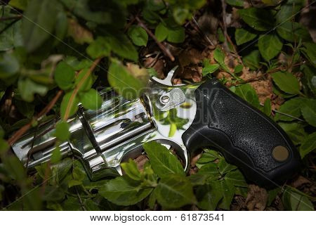 Revolver Thrown Away