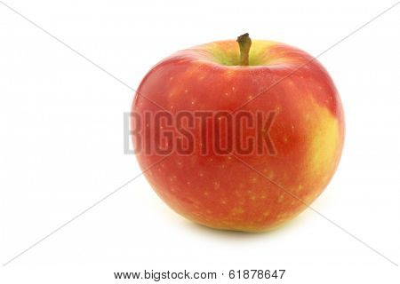 fresh new Dutch apple variety called on a white background