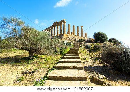 Temple Of Juno
