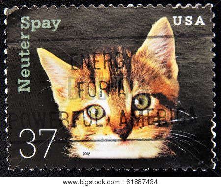 UNITED STATES OF AMERICA - CIRCA 2002: A stamp printed in the USA shows image cat