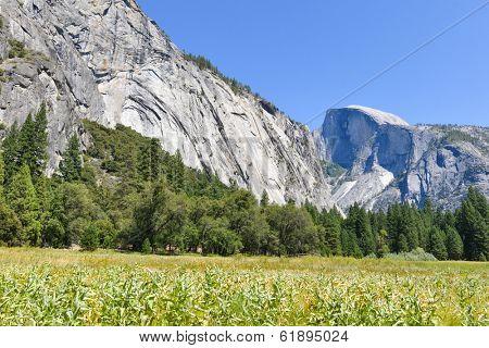 Yosemite National Park - California, United States
