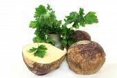 stock photo of rutabaga  - two turnips and parsley against white background - JPG