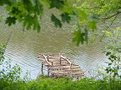 pic of dock a pond  - Old wooden pier - JPG
