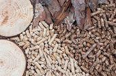 picture of briquette  - Biomass - JPG