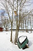 foto of box-end  - winter end old boat and bird nesting - JPG