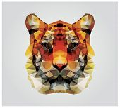 foto of polygons  - Geometric polygon tiger head - JPG