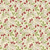 image of barberry  - seamless texture barberry on a beige background - JPG