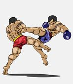 foto of muay thai  - Muay thai Vector and illustration - JPG