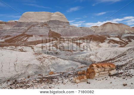 Blue Mesa Badlands In Petrified Forest National Park, Arizona