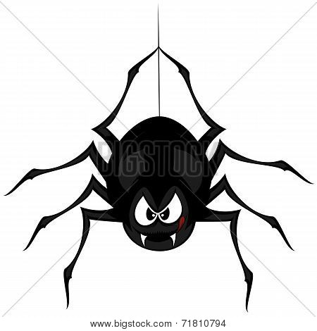 Funny freaky spider