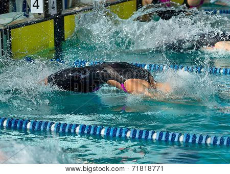 Female Swimmer Dive Into Water At The Start Of A Backstroke Race