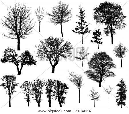 Wintertreesilhouettessmall.eps