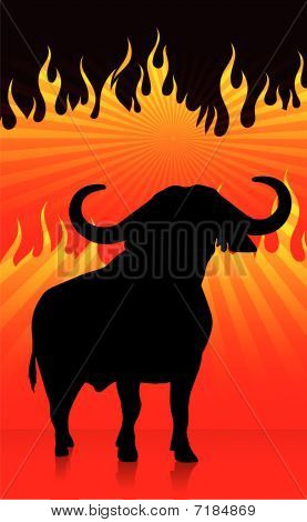 Bull With Fire Background