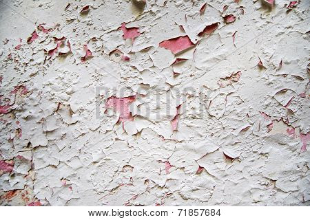 Effect Of Mold