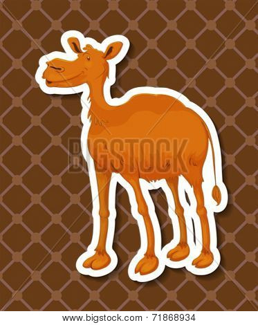 Illustraion of a camel with background