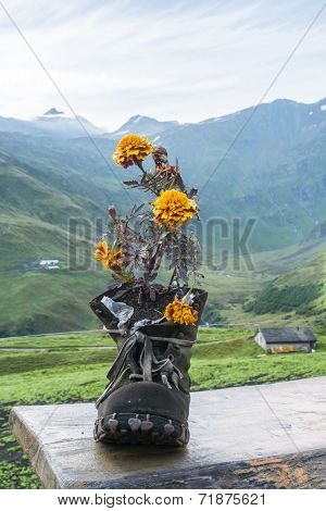 LA PEULE, SWITZERLAND - AUGUST 30: Walking boot turned flower pot in refuge La Peule, with mountains in the background. The refuge is a Mont Blanc tour stage. August 30, 2014 in La Peule.