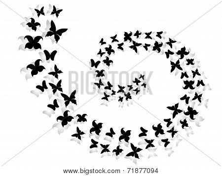 Spiral Of Flying Butterflies