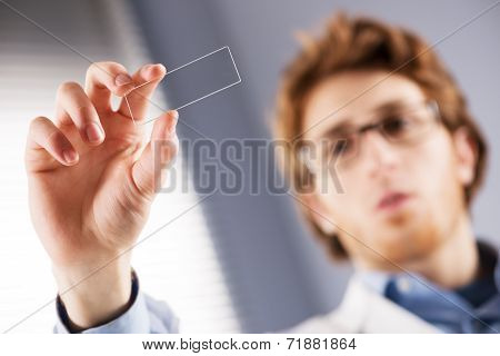 Researcher Holding Microscope Slide