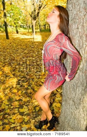 Young Woman Near The Tree
