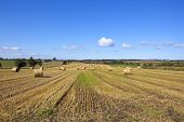 stock photo of hay bale  - round hay bales in autumn in a scenic landscape near the north york moors in yorkshire - JPG