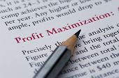 image of maxim  - profit maximization red line with pencil pointer - JPG