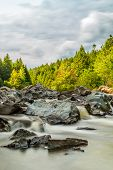 image of acadian  - Moose Horn Trail Broad River  - JPG