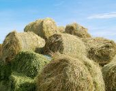 picture of hay bale  - image of a hay bales against blue sky - JPG