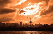 Silhouettes Of A City At Sunset poster