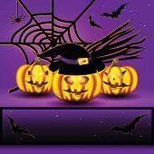 pic of spiderwebs  - Halloween background with spiderweb - JPG