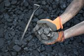 pic of minerals  - Miner working  holding a stone coal mineral - JPG