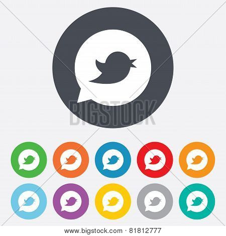 Bird sign icon. Social media symbol.