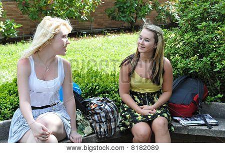 Teenage Girls Talking Outside Of School
