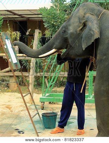 elephant paints a picture