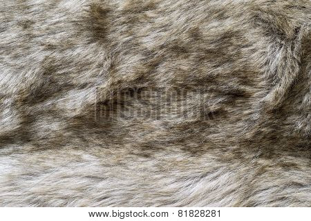 Abstract Texture Of Old Wolf Fur Fabric