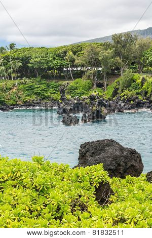 Coast at Wai'anapanapa, Maui