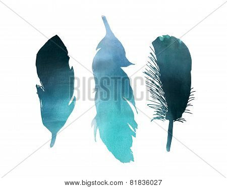 Bird Feather Blue Watercolor