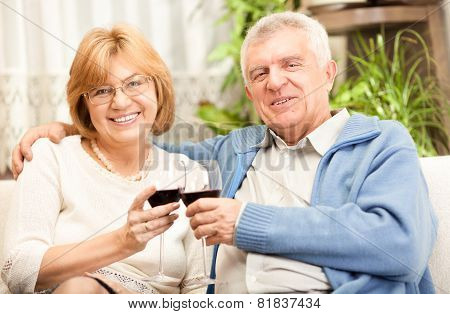 Happy Senior Couple Toasting Their Anniversary