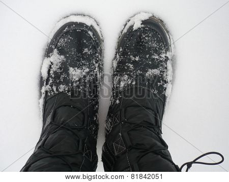Feet in to snow