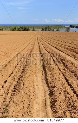 Recently Plowed Farm Field