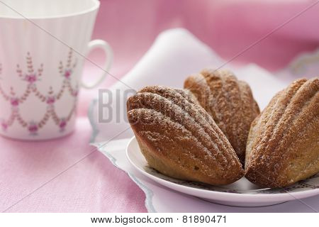 Madeleine with green tea on a pink background