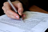 stock photo of petition  - legal law concept  - JPG