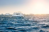 Постер, плакат: White Yachts In The Red Sea